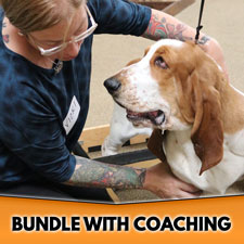 Conformation Instructor Bundle