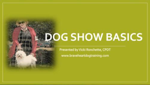 Dog Show Basics Webinar