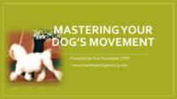 Mastering Movement Webinar